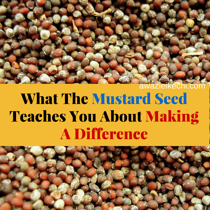 What The Mustard Seed Teaches You About MAKING A DIFFERENCE (1)