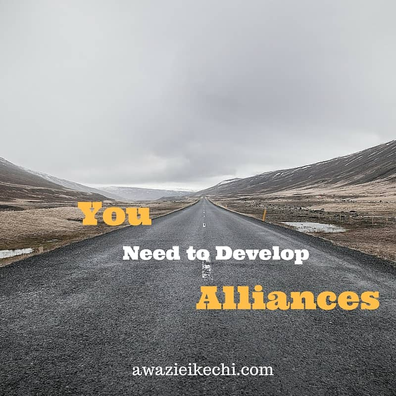 Blog-Alone: What it Taught me About Developing Alliances